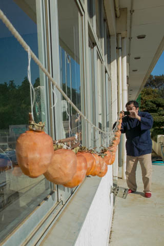 仁連小学校に干してあった柿を撮ろうとする高山正樹