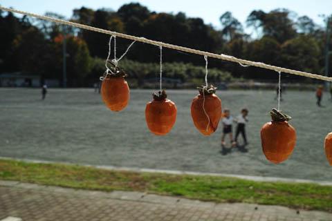 仁連小学校に干してあった柿